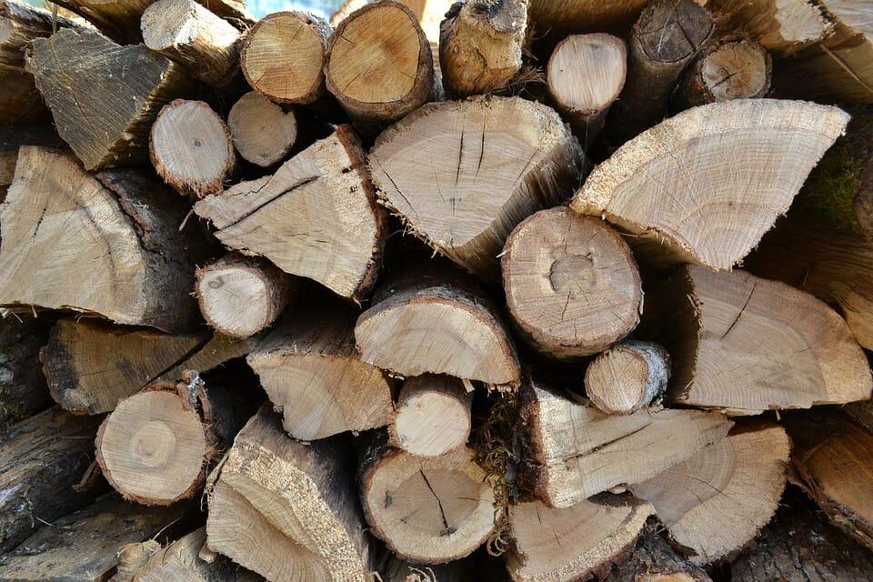 Le bois: un matériau captivant, polyvalent et facile à réparer