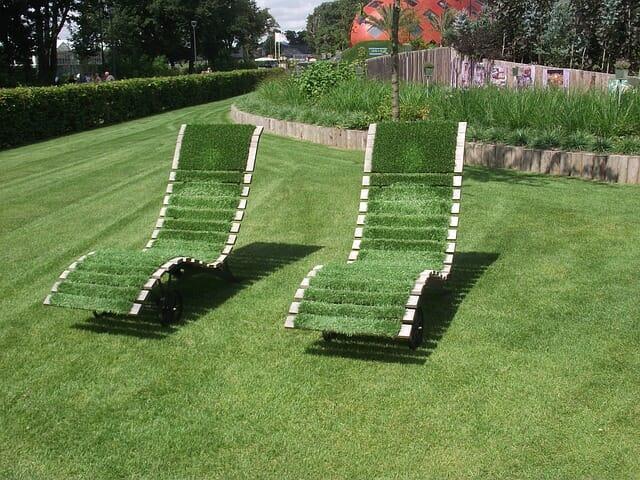 Comment choisir et entretenir sa pelouse?