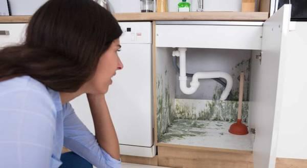 4 raisons pour lesquelles vous devriez faire nettoyer vos canalisations par un professionnel