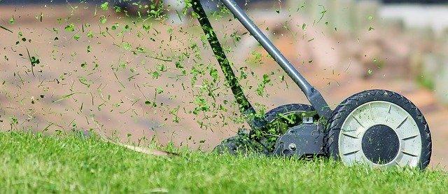 Pourquoi entretenir la pelouse de son jardin ? Des travaux d'entretien pour un confort unique
